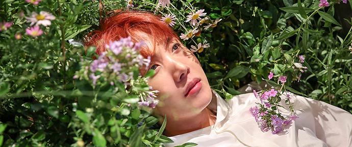 📷 Álbum Especial – 2018 J-Hope Day