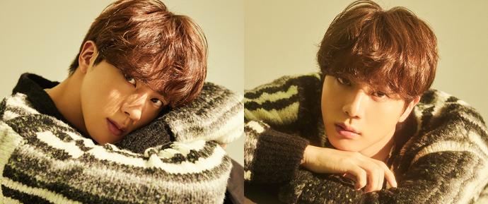 """Jin: """"Parece que as minhas memórias dos ARMYs foram todas um sonho"""""""