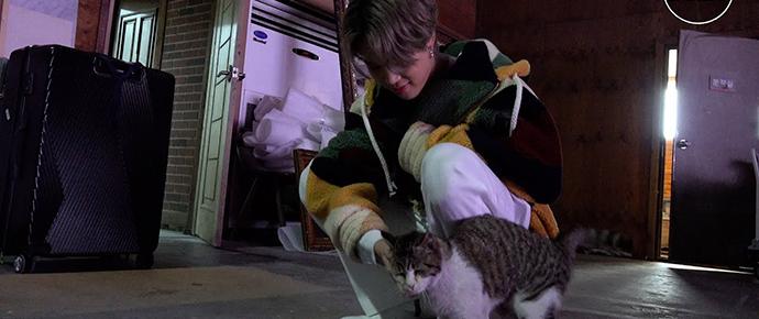 [BANGTAN BOMB] Você tem uma Meow-sita!